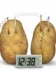 4M - Green Science - Potato Clock