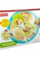 Fisher-Price Newborn-to-Toddler Portable Rocker - Green Safari